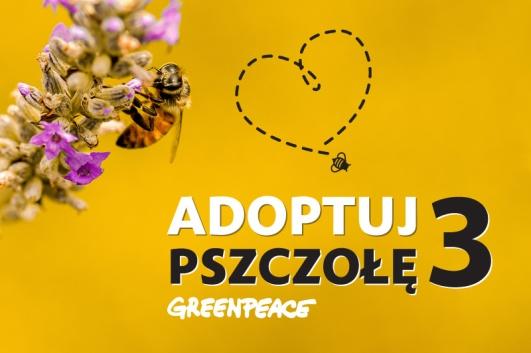 Greenpeace 2015